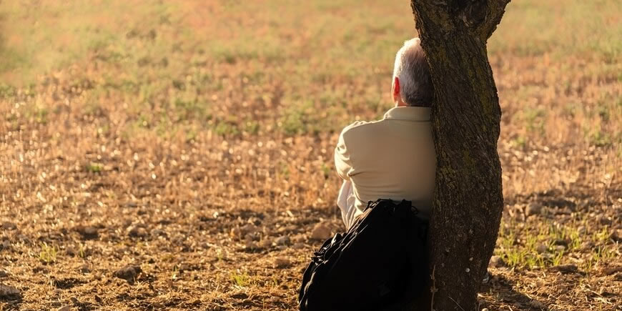 Male Climacteric or Male Menopause and Medicinal Mushrooms